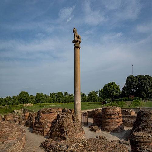 The-Pillars-of-Ashoka-(Ashoka'nın-Sütunları)-–-Delhi-ve-Allahabad